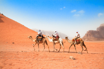 A tourists ride camels through beautiful red desert