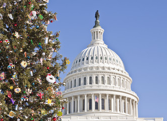 Wall Mural - Christmas Tree at the Capitol Building