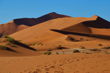 Photo sur Plexiglas Orange eclat Dunes du Namib