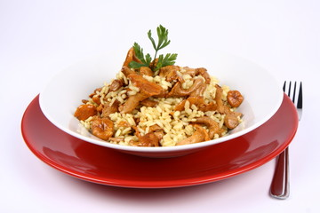 Risotto with mushrooms on a plate with parsley and a fork