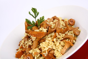 Risotto with mushrooms on a plate decorated with parsley