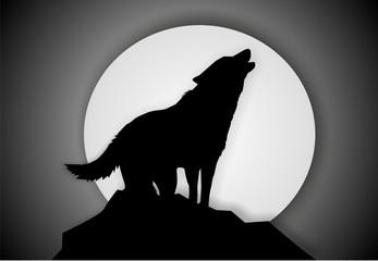 wolf - illustration