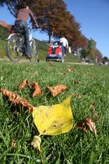Radfahrer im Herbst IV