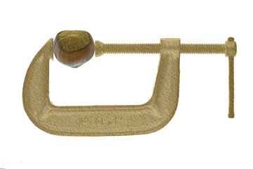 hazelnut in gold C-clamp