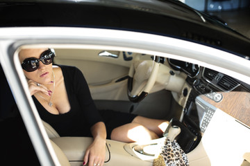 Luxury woman  sitting in the car