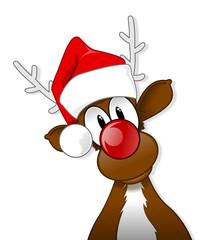 Rudolph in Santa hat