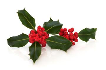 Holly Berry Leaf Sprigs