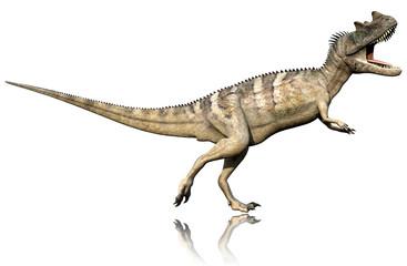 ceratosaurus side defend reflection