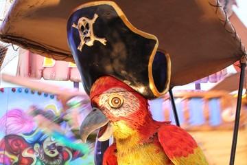 Pirat (Papagei)