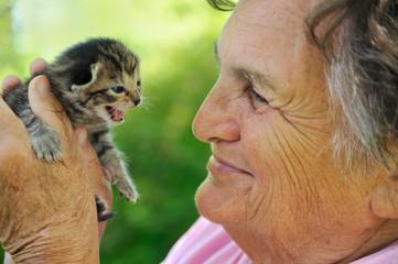 Senior woman holding little kitten