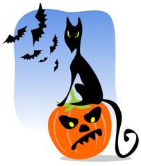 black cat and bats