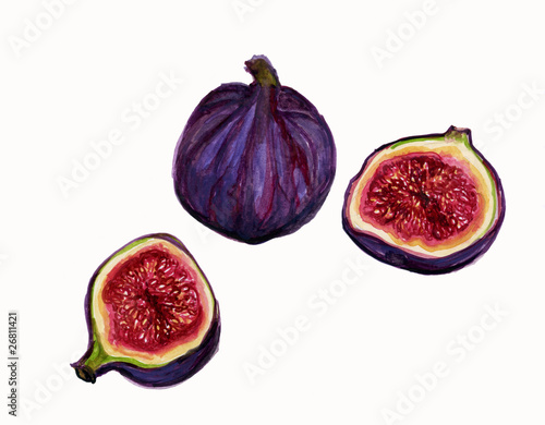 symbolism in ripe figs Know your figs kadota fig medium use ripe figs as soon as possible or store in refrigerator for up to 3 days the fig tree is the symbol of abundance.