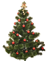 Christmas tree. Isolated.