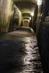 Gutter Tunnel