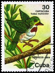 CUBA - CIRCA 1984 Tody