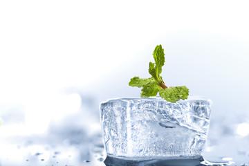 ice mint