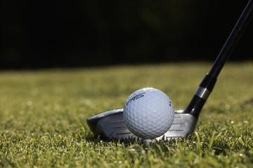 golf, driver au depart