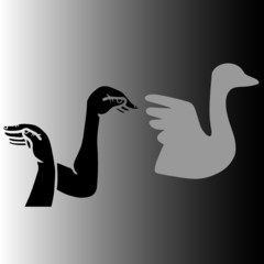 swan - hands making swan silhouette from shadow