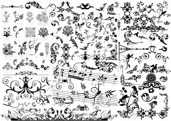 Collection of floral element - vector