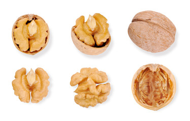set of walnuts on white background