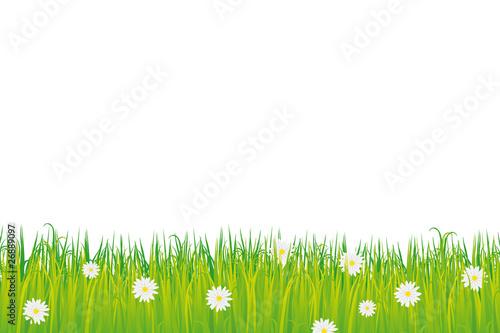 herbe fleurie vectorielle fichier vectoriel libre de droits sur la banque d 39 images. Black Bedroom Furniture Sets. Home Design Ideas