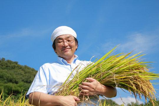 農業 豊作 喜ぶ 稲 抱える 日本人