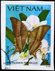 VIETNAM - CIRCA 1983 Nyctalemon