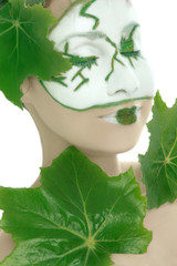 Green plant cosmetics for skincare