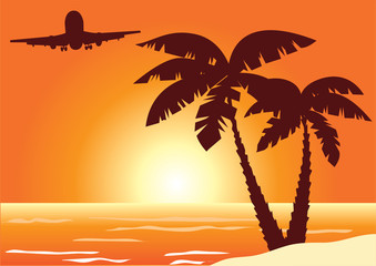 beach with palms and plane