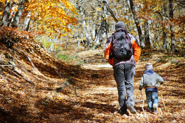 Fototapeta father and son walking in autumn forest