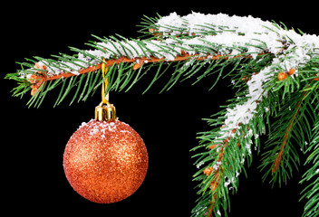 Golden ball on a Christmas tree branch isolated on black