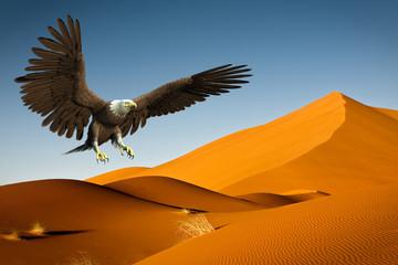 Fototapete - american bald eagle desert hunting