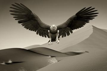 Fototapete - american bald eagle desert landing old