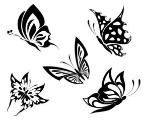 Set  black white butterflyes of a tattoo