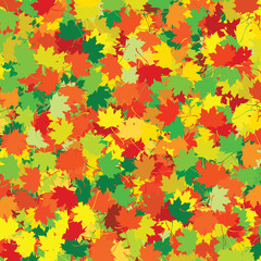 colorful leaves - yellow, orange, green, brown, red