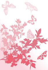 five pink butterflies near sakura