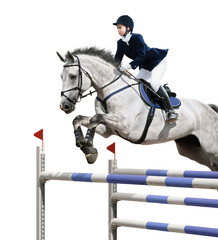 Wall Mural - Equestrian jumper