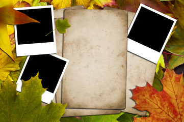 Papers and photos on a leaves background
