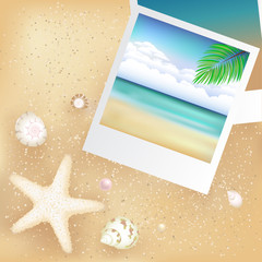 Blank Photos With Starfish