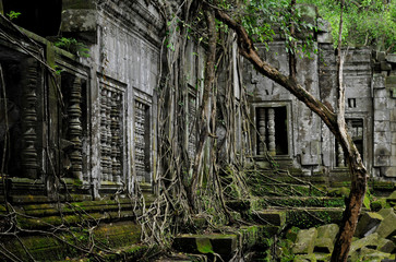 Beng Mealea temple in cambodia