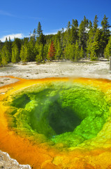 Morning Glory Thermal Pool. Yellowstone National Park, Wyoming
