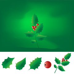 Sprig of christmas holly vector illustration
