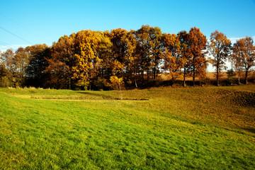 Landschaft im Herbst 736
