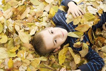 Portrait of beautiful child lying down with leaves around.