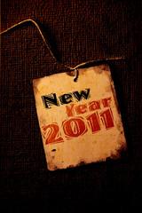 2011 year