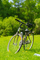 bicycle at sunny park