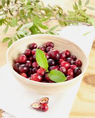 Cranberries in Schale