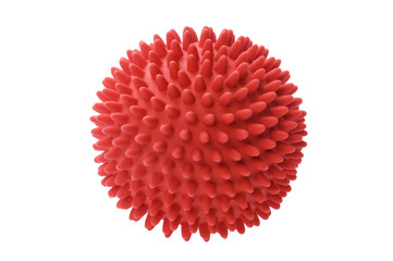 ball toy for dog