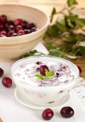 Joghurt mit Cranberries
