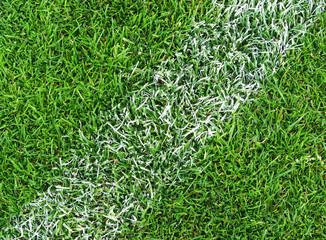 Fußball Rasen Nahaufnahme - Soccer Grass Close-up